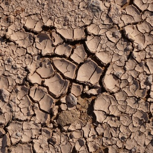 CRACKED SOIL 1